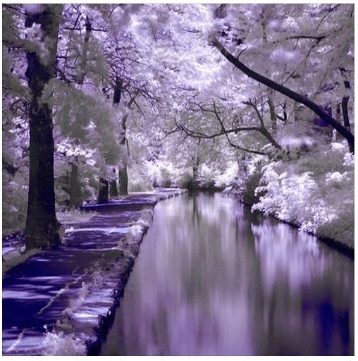 Living Waters in God's Garden - Rebecca Alderman Inspiration